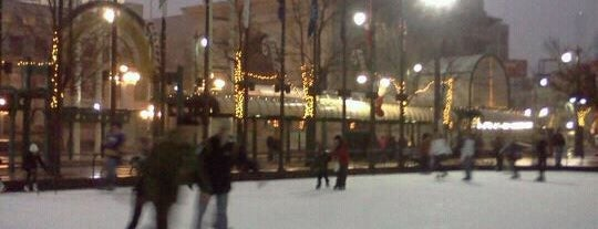 Rotary Rink is one of The Best of Buffalo, NY.