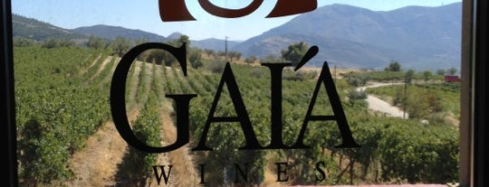 Gaia wines is one of Wineries.