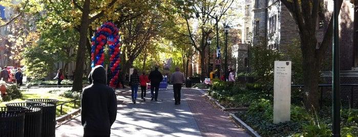 Universidad de Pensilvania is one of Badge of Brotherly Love #visitUS.