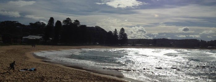 Avoca Beach is one of Australia - Must do.