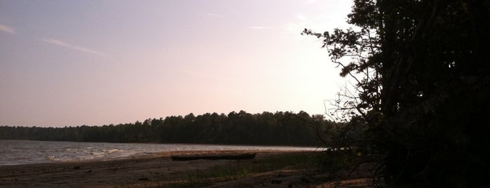Jordan Lake State Recreation Area is one of Best places to go stoned.