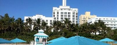 The Palms South Beach Hotel Miami is one of สถานที่ที่ Eve ถูกใจ.
