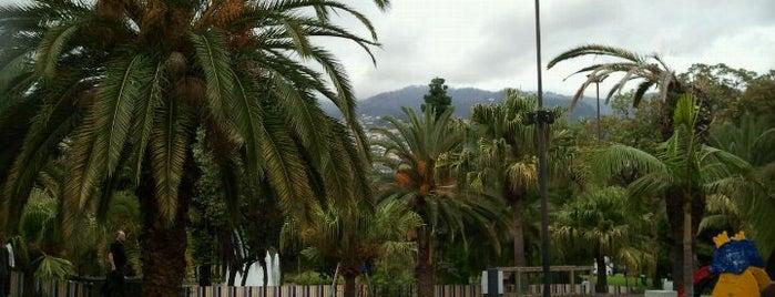 Funchal #4sqCities