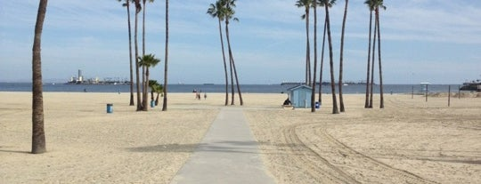 "Shoreline Pedestrian Bikepath is one of My ""Bucket list""."