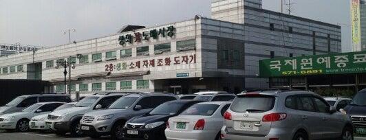 양재 꽃시장 (aT 화훼공판장) is one of 소은 님이 좋아한 장소.
