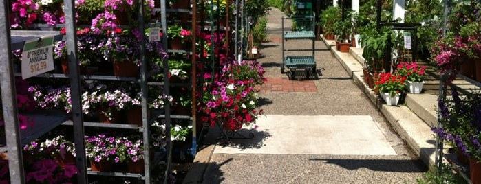 14th Street Garden Center is one of Lugares favoritos de SKW.