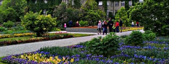 Botanischer Garten is one of StorefrontSticker #4sqCities: Munich.