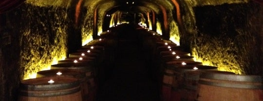 Del Dotto Historic Winery & Caves is one of WINE BARS.