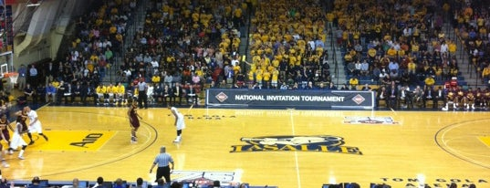 Tom Gola Arena is one of NCAA Division I Basketball Arenas/Venues.