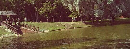 Несвижский парк is one of Bengi: сохраненные места.