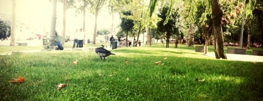 Bebek Parkı is one of themaraton.