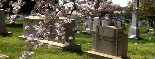 Historic Congressional Cemetery is one of 111 Places Tips.