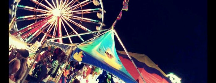 Sarasota County Fairgrounds is one of Things To Do.