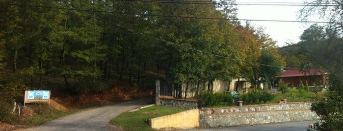 Bıçkıdere is one of Lugares guardados de 💯💪🏻☀️☀️fatih💫.