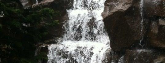 Waterfall Garden Park is one of 2012 MLA Seattle.