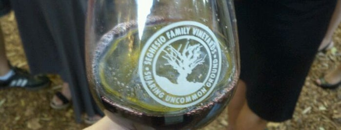 Seghesio Family Vineyards is one of Lidia's Italy in America.