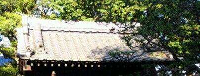 行善寺 is one of せたがや百景 100 famous views of Setagaya.
