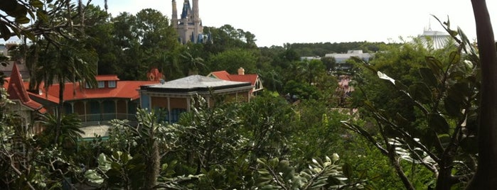 Swiss Family Treehouse is one of Walt Disney World.