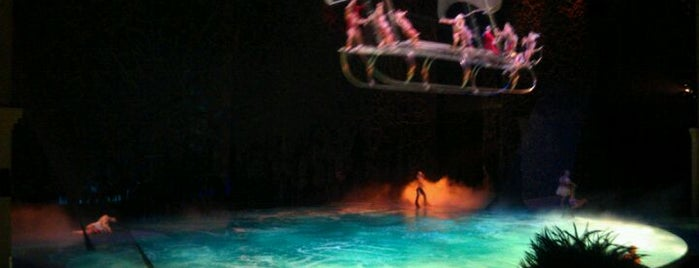 The Beatles LOVE (Cirque du Soleil) is one of Las Vegas.