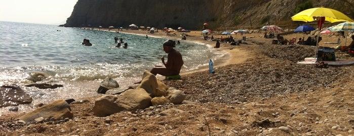 Playa Bol Nou is one of Locais salvos de Natalia.