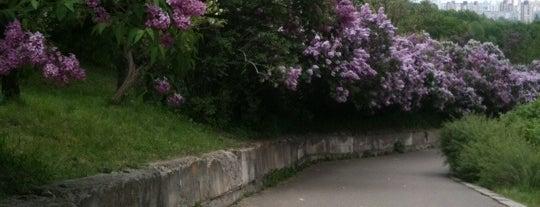 Національний ботанічний сад ім. М. М. Гришка / Gryshko National Botanic Garden is one of Kyiv #4sqCities.