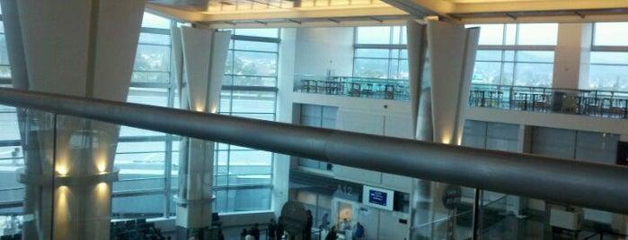 Gate A15 is one of Steve 'Pudgy''ın Kaydettiği Mekanlar.