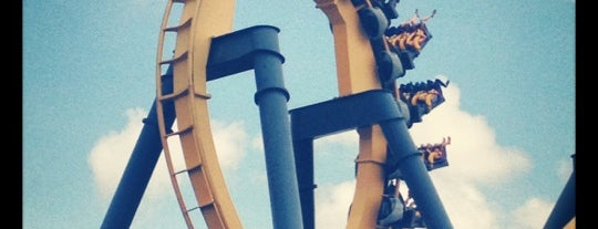 Batman the Ride is one of ROLLER COASTERS.