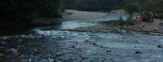 道志渓谷キャンプ場 is one of Favorite Campground.