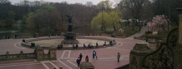 Central Park is one of Lugares favoritos de Héctor.