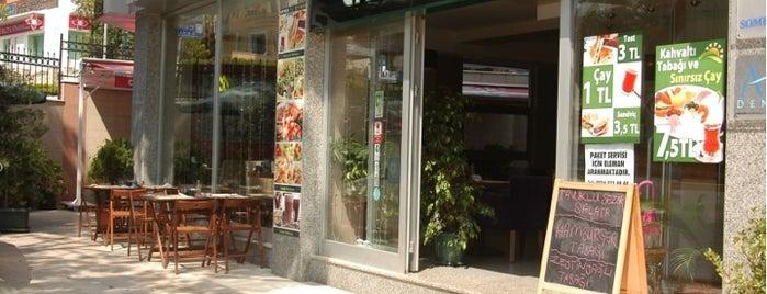 Cafe Mola is one of Tempat yang Disukai Serpil.