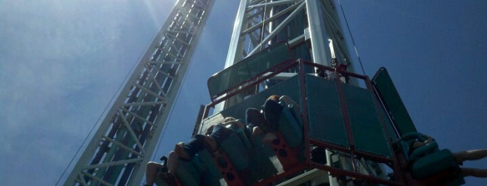 Scream is one of ROLLER COASTERS.