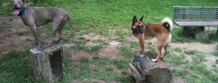 Oakhurst Dog Park is one of สถานที่ที่ Louis ถูกใจ.