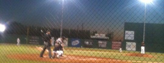 Sam Lynn Ballpark is one of Minor League Ballparks.