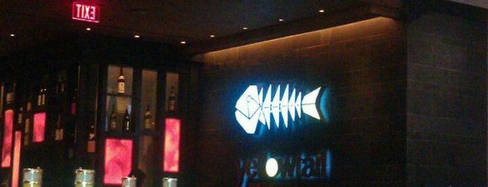 Yellowtail is one of Best Sushi.