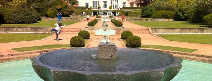 Parque de Serralves is one of portugal.