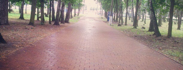 Парк культуры и отдыха is one of Tempat yang Disukai Alexander.