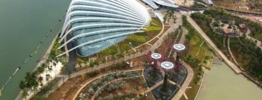 Esplanade Park is one of My Singapore Trip'12.