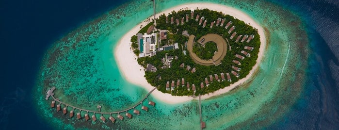 Park Hyatt Maldives Hadahaa is one of Modern Lux Hotels.