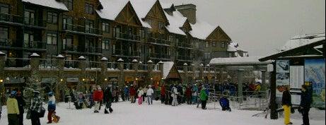 Kicking Horse Mountain Resort is one of BC Ski Resorts.