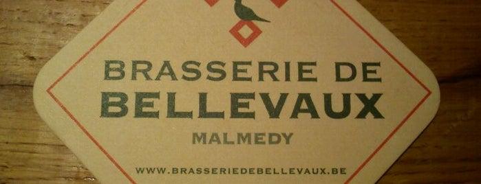 Brasserie de Bellevaux is one of Michael: сохраненные места.