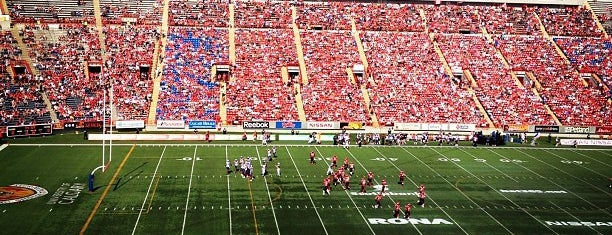 McMahon Stadium is one of sports arenas and stadiums.
