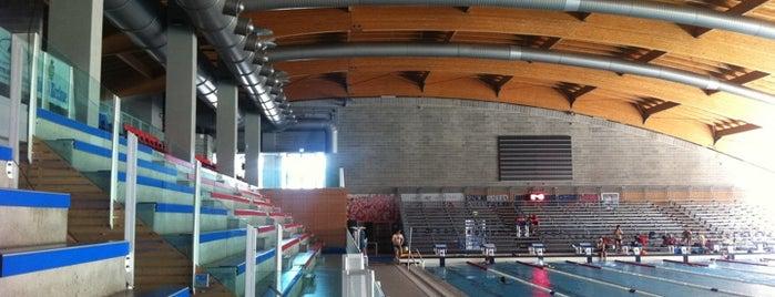 Stadio Del Nuoto is one of Riccione.