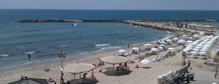 Nordau (Sheraton) Beach || חוף נורדאו (שרתון) is one of G-Rated.