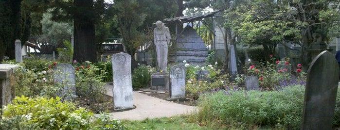 Mission San Francisco de Asís is one of Cerda's 'cisco..