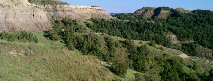 Theodore Roosevelt National Park is one of National Recreation Areas.