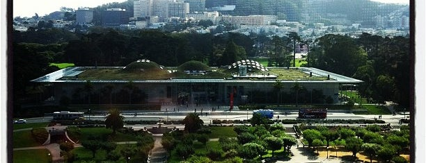 de Young Museum is one of San Francisco Museums & Art Galleries.