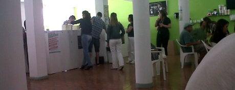 Espaço Vida Saudável (Herbalife) is one of Espaço Vida Saudável Curitiba.
