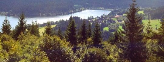 Schluchsee is one of Simon 님이 좋아한 장소.