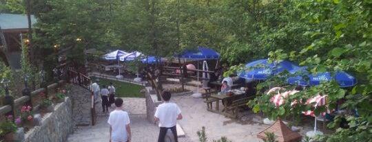 Dere Bahçe Restaurant is one of Mutlaka gidilmeli!.