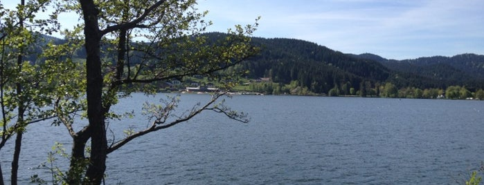 Gerardmer is one of France.